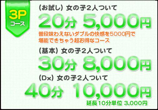 3Pコース:普段味わえないダブルの快感を5000円で堪能